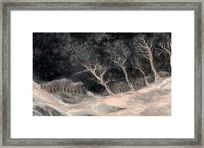 O2 Framed Print by Hans Neuhart