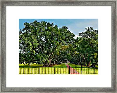 Oak Alley Plantation 2 Framed Print by Steve Harrington