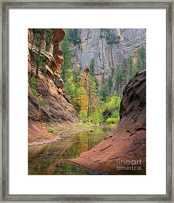 Oak Creek Canyon Framed Print by Timm Chapman