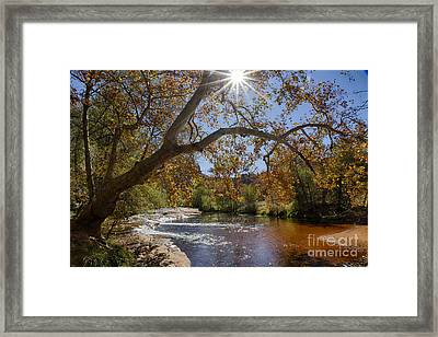 Oak Creek Framed Print by Idaho Scenic Images Linda Lantzy
