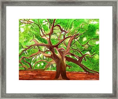 Oak Tree Framed Print by Magdalena Frohnsdorff