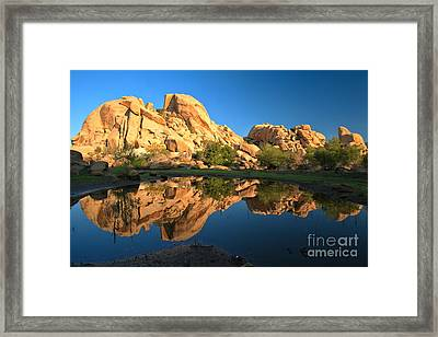 Oasis Reflections Framed Print by Adam Jewell