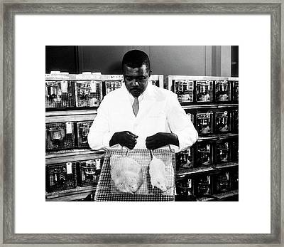 Obesity Research Framed Print by National Library Of Medicine