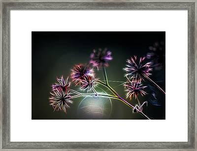 Obscure Framed Print by Brad Grove
