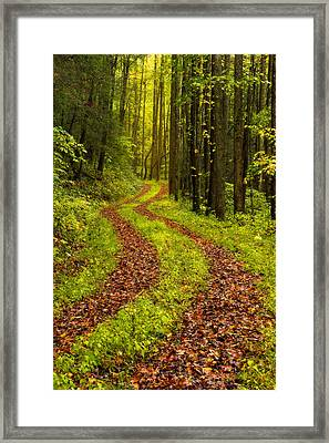 Obscured Framed Print by Chad Dutson