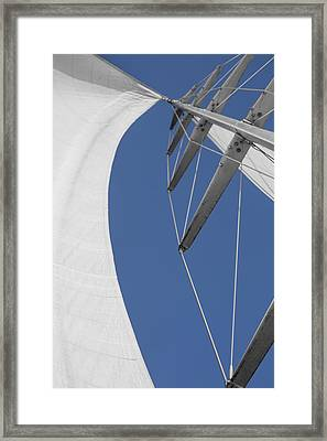 Obsession Sails 9 Framed Print by Scott Campbell