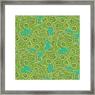 Ocean Algae Framed Print by Sharon Turner