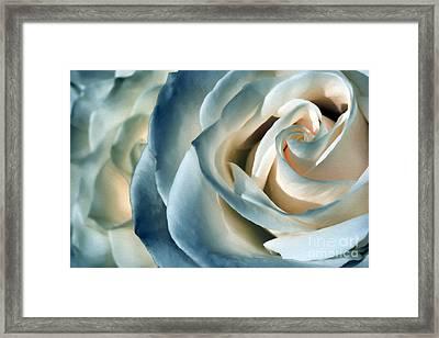 Ocean Rose By Kaye Menner Framed Print by Kaye Menner