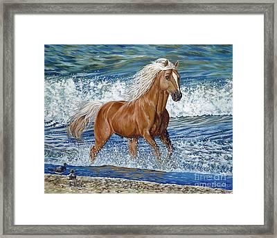 Ocean Stallion Framed Print by Danielle  Perry