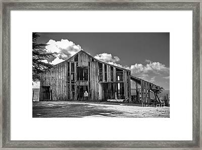 Ocean View Barn Framed Print by Amy Fearn