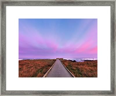 Ocean View Framed Print by Leland D Howard