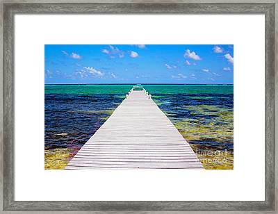 Ocean Walkway Framed Print by Carey Chen