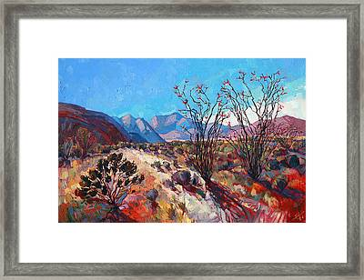 Ocotillo Color Framed Print by Erin Hanson