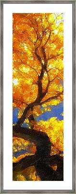 October Colors Framed Print by Ron Regalado