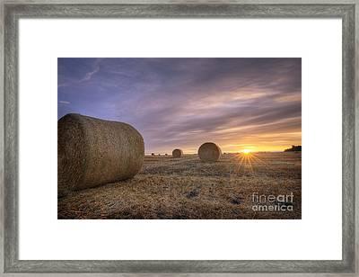 October Morning Framed Print by Dan Jurak