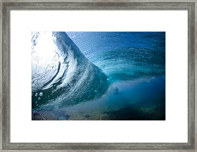Octopuss's Garden Framed Print by Sean Davey