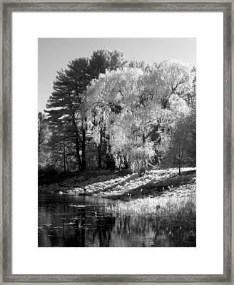 Off The Beaten Path Framed Print by Luke Moore