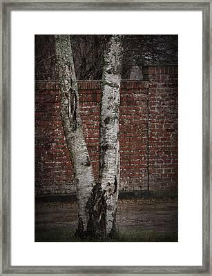 Off The Wall Framed Print by Odd Jeppesen