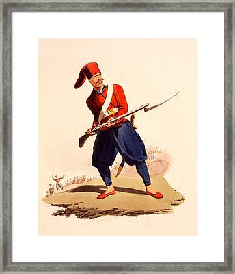 Officer Of European Infantry Of Ottoman Framed Print by Thomas Charles Wageman