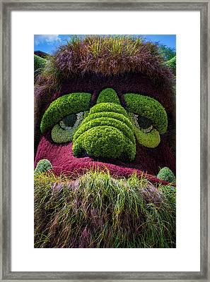 Ogre Framed Print by Joan Carroll