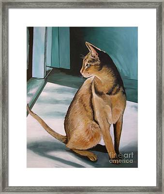 Oh Beautiful House Cat Framed Print by J Linder