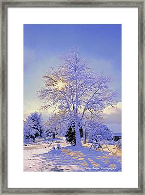 Oh Beautiful Star With Signature Framed Print by Lorna Rogers Photography