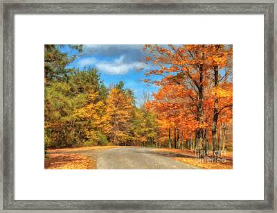 Oh Happy Day Framed Print by Lois Bryan
