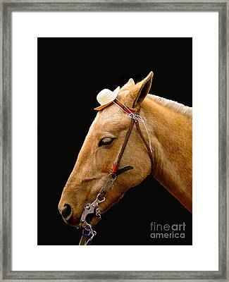 Oh Yeah    Very Funny Framed Print by Al Bourassa