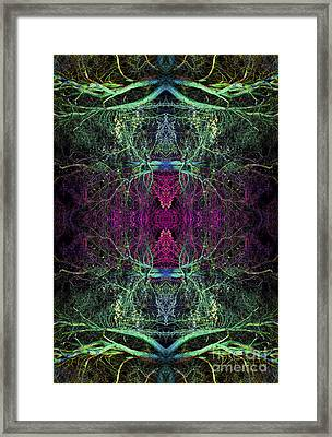 Ohtar Framed Print by Tim Gainey