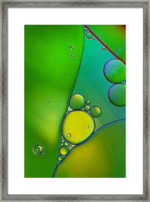 Oil And Water 9 Framed Print by Rebecca Cozart