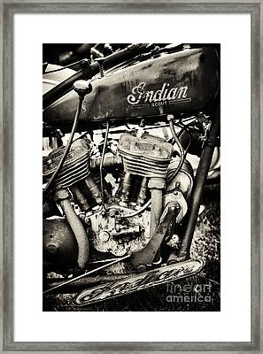 Oily Old Indian Framed Print by Tim Gainey