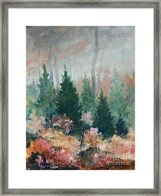 Oklahoma Cedars Framed Print by Micheal Jones