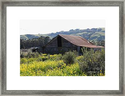 Old Barn In Sonoma California 5d22232 Framed Print by Wingsdomain Art and Photography