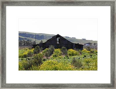 Old Barn In Sonoma California 5d22235 Framed Print by Wingsdomain Art and Photography
