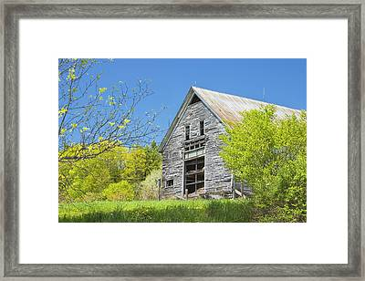 Old Barn In Spring Maine Framed Print by Keith Webber Jr