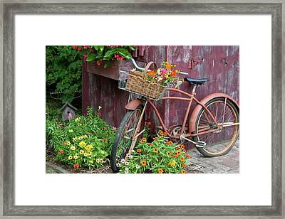 Old Bicycle With Flower Basket Next Framed Print by Panoramic Images