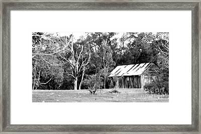 Old Bush Shed Framed Print by Phill Petrovic