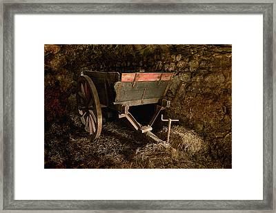 Old Cart Framed Print by Liz  Alderdice