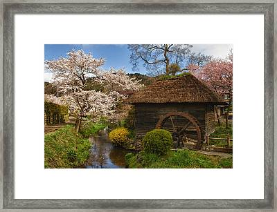 Old Cherry Blossom Water Mill Framed Print by Sebastian Musial