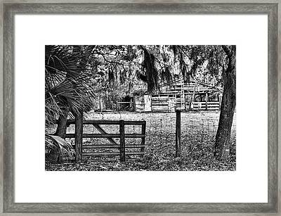 Old Chisolm Island Barn Framed Print by Scott Hansen