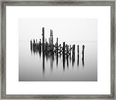 Old Dock Pilings - Tacoma - Washington - January 2014 Framed Print by Steve G Bisig