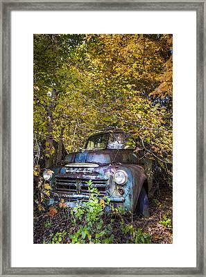 Old Dodge Framed Print by Debra and Dave Vanderlaan