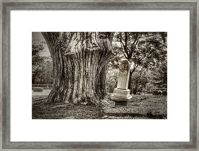 Old Friends Framed Print by Scott Norris