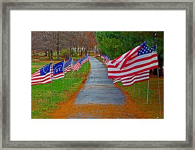 Old Glory Framed Print by Andy Lawless