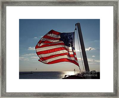 Old Glory Framed Print by Skip Willits