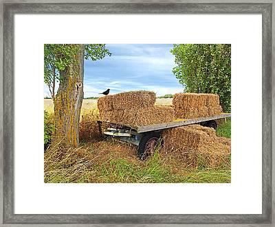 Old Hay Wagon Framed Print by Gill Billington
