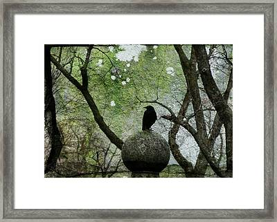 Old Moss Framed Print by Gothicolors Donna Snyder