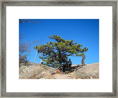 Old Rag Hiking Trail - 121238 Framed Print by DC Photographer