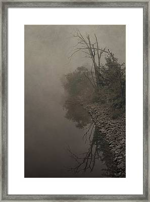 Old Soul Framed Print by Dan Sproul