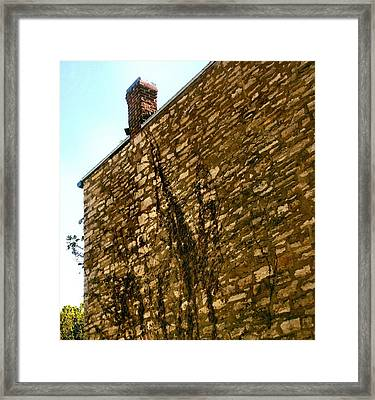 Old Stone And Creepies Framed Print by Lynne and Don Wright